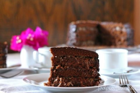 America S Test Kitchen German Chocolate Cake Recipe