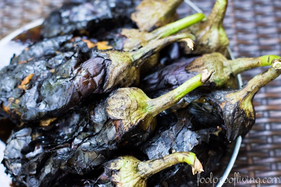 Roasted eggplants are photographed from the front view