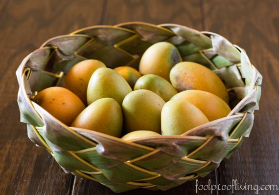 Mango and Red Quinoa Cereal