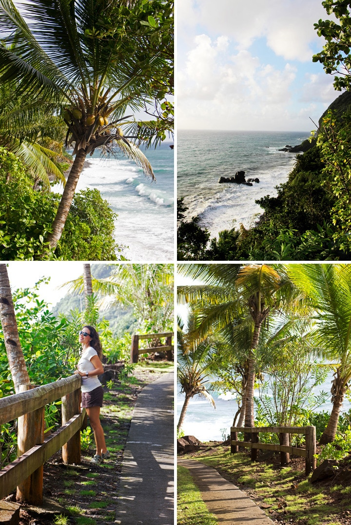 A collage of photos of our trip in Dominica