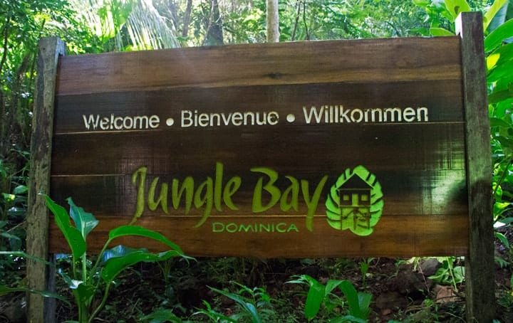 Jungle Bay sign