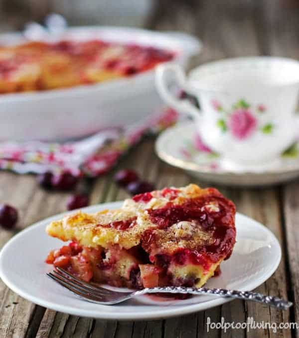 A slice of Apple Cranberry Cake photographed from the front view.