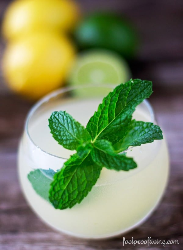 A glass of iced ginger tea garnished with fresh mint