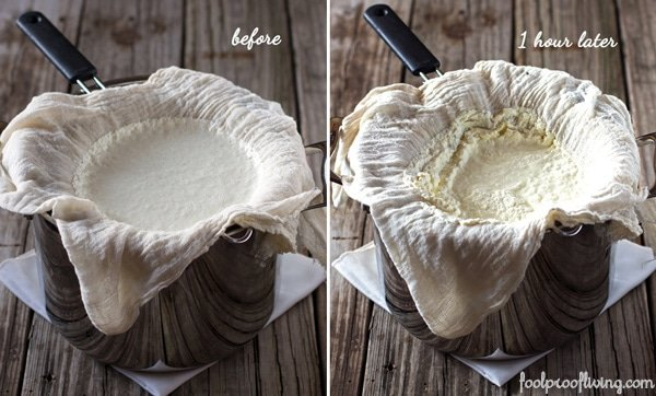 How to make Ina garten's Ricotta Cheese - step by step photos
