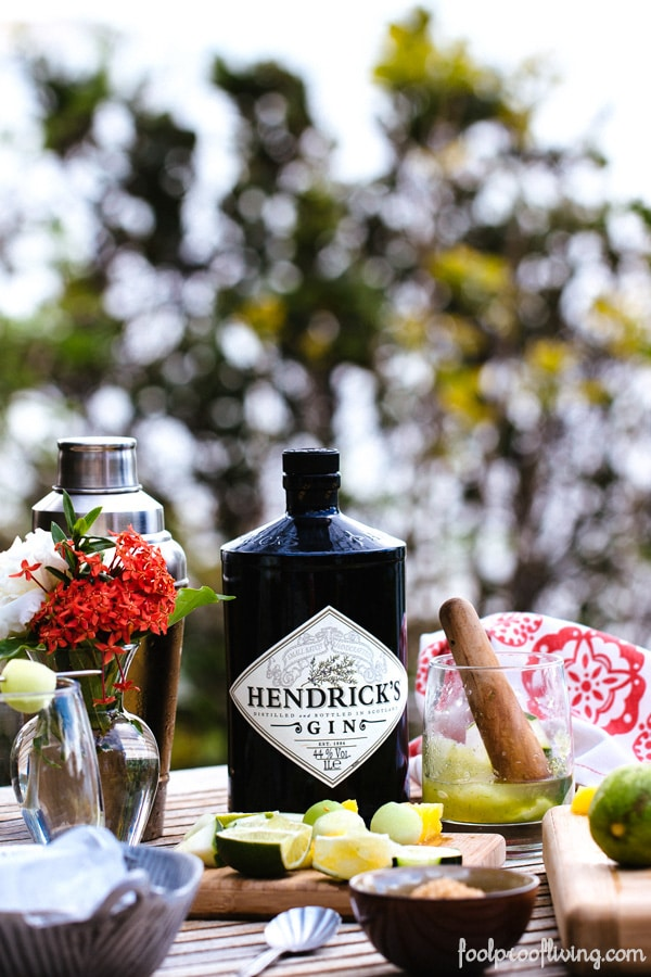 Ingredients for cocktail recipes including muddler and Hendricks Gin