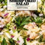 shrimp orzo salad close up with text on the image