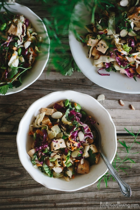 Almond and Sesame Asian Chicken Salad - FoolproofLiving