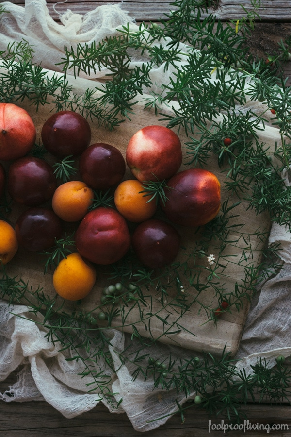 Summer Fruit Crumble