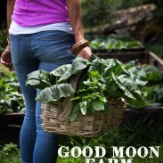 Good Moon Farm, British Virgin Islands