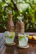 Celery Citrus Spritzer