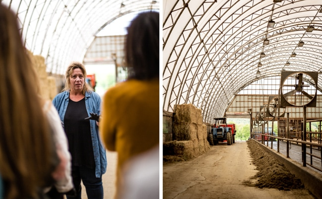 Stonyfield Organic Farmers - Photos from the farm