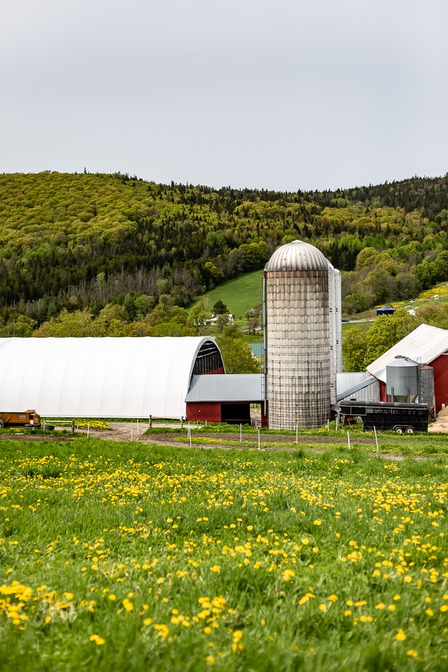 A view of a farm in Stowe Vermont