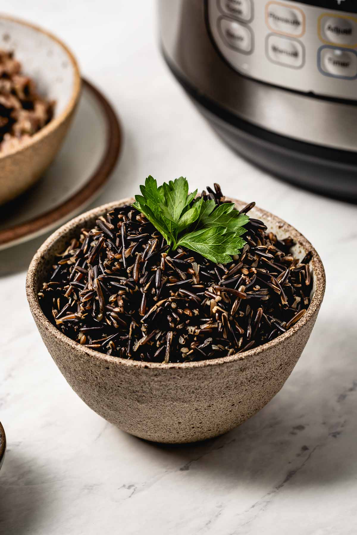 Cooked wild rice in a bowl garnished with parsley