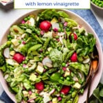 Boston Butter Lettuce Salad in a bowl with text on the image