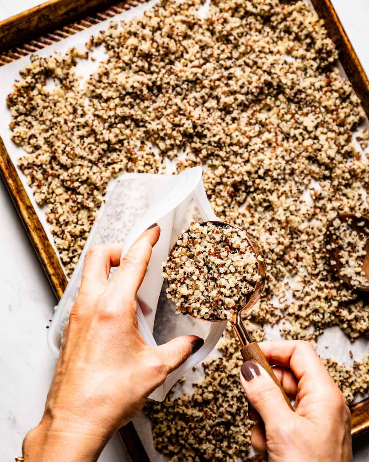Person placing measured cooked quinoa in a plastic bag to freeze