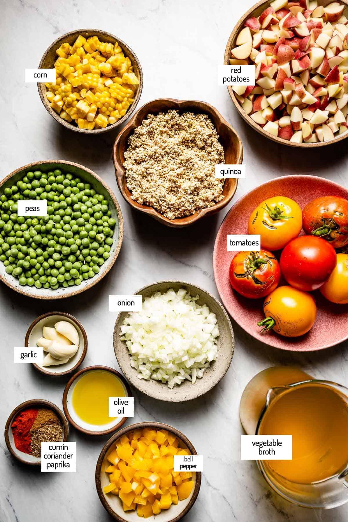 Healthy vegetable stew ingredients